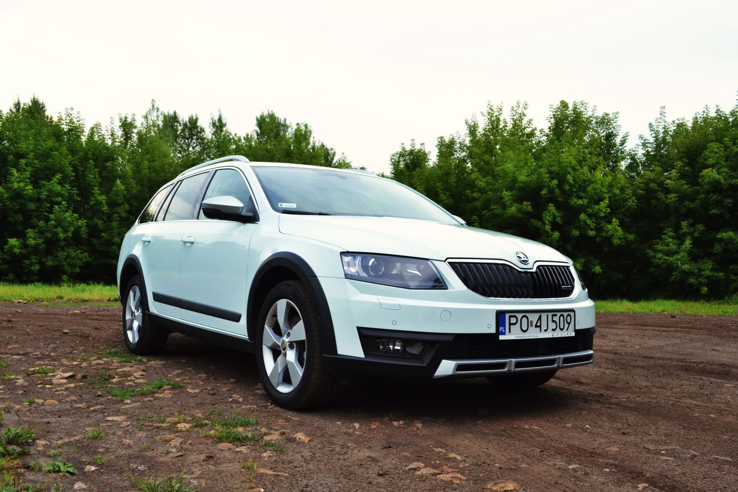 skoda octavia scout 2 0 tdi dsg 4x4 ta najdzielniejsza. Black Bedroom Furniture Sets. Home Design Ideas