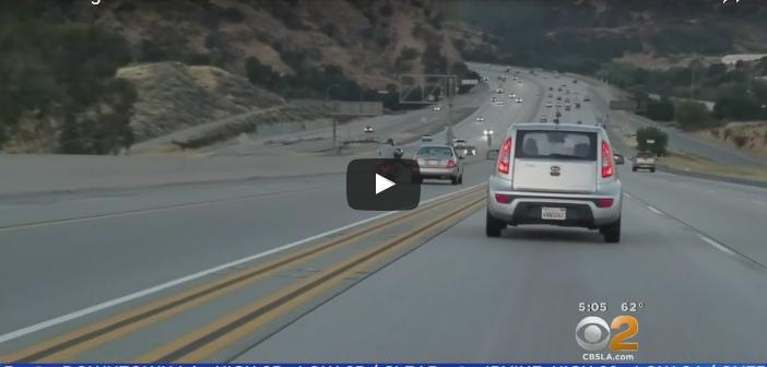 Walka drogowa motocyklisty zkierowcą samochodu (Video)