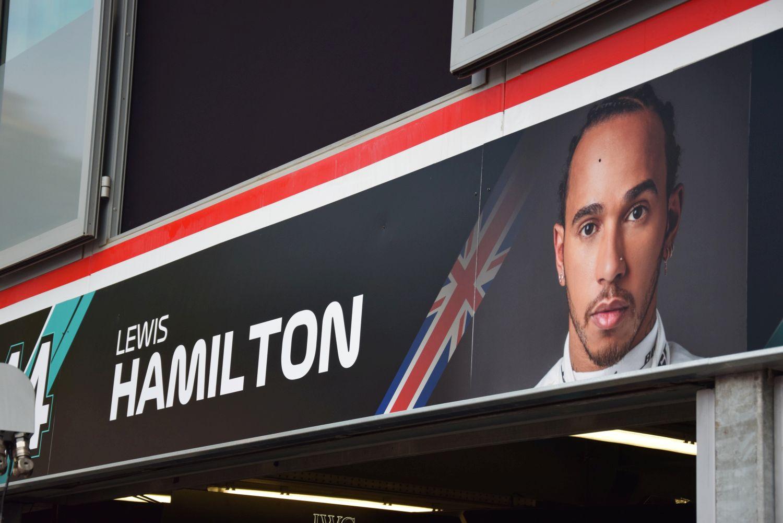 Hamilton covid