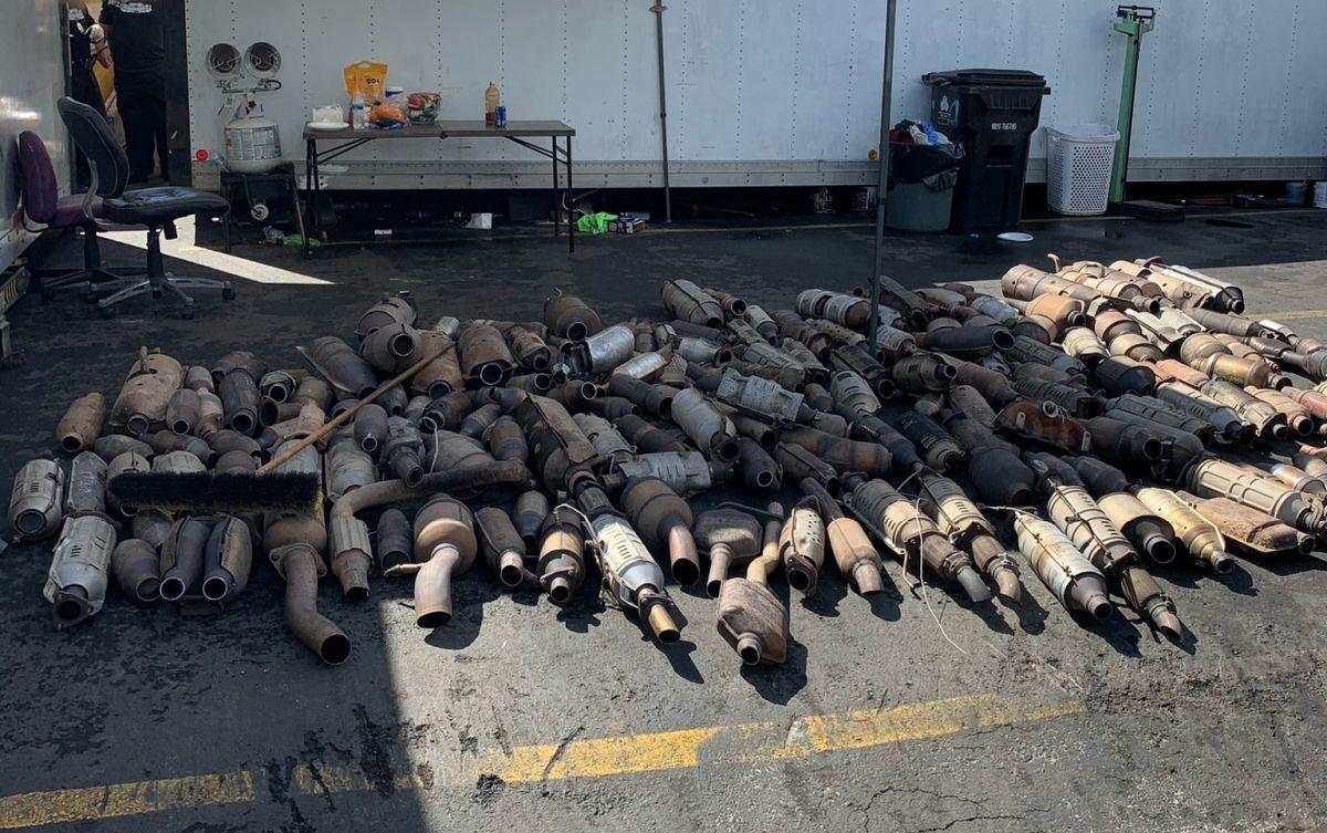 Policja znalazła dziuple z katalizatorami