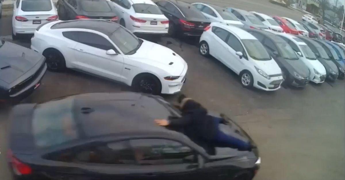 Kradzież BMW M4 spod salonu