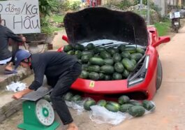 Ferrari replica and watermelons