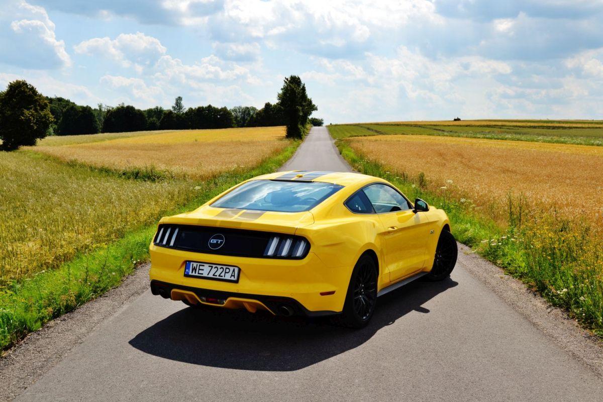 Ford Mustang V8 Polska
