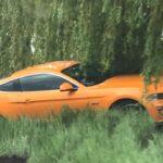Kierowca Mustanga